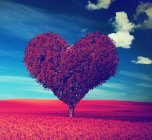 self love and manifesting
